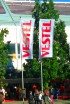 Vestel: Turkish smartphones from IFA