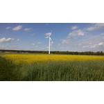 Imágenes de los usuarios LG Optimus 4X HD