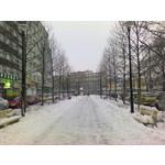 Imágenes de los usuarios Nokia 5230
