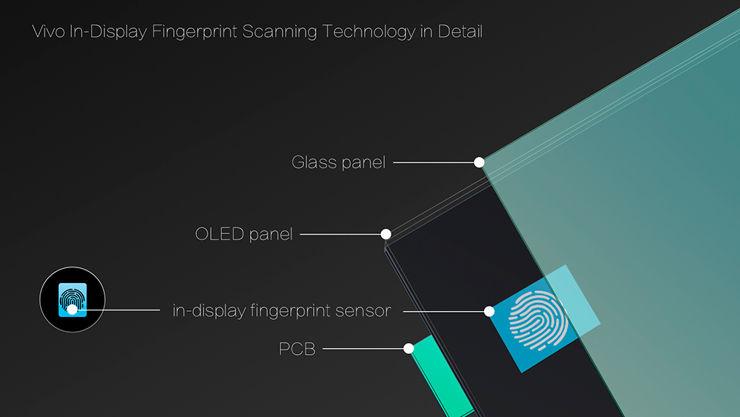 The presentation of the Vivo screen reader