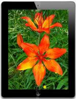 The photo gallery of Apple iPad 4 16 GB