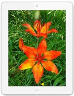 Galería de imágenes de Apple iPad 4 Wi-Fi 128 GB