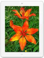 Apple iPad 4 Wi-Fi 16 GB