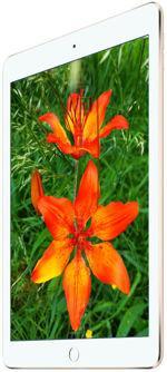 Gallery Telefon Apple iPad Air 2 WiFi