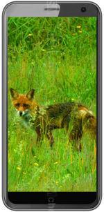 Gallery Telefon Black Fox B4 Mini