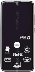 相册 Black Fox B8M Fox