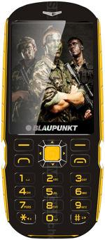 The photo gallery of Blaupunkt RS 01
