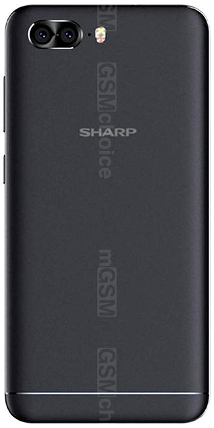 Sharp R1s