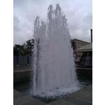Foto dei utenti HTC Desire Z