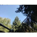 Les photos des utilisateurs Oppo Reno 10x Zoom