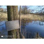 Selbst von Nutzern gemachte Bilder Redmi Note 7