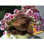 Fotos de usuários Samsung GT-S5830 Ace