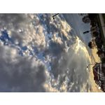 Imágenes de los usuarios Xiaomi Mi 9